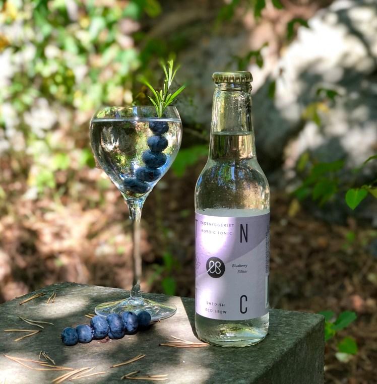Gin med blåbär och blåbärstonic