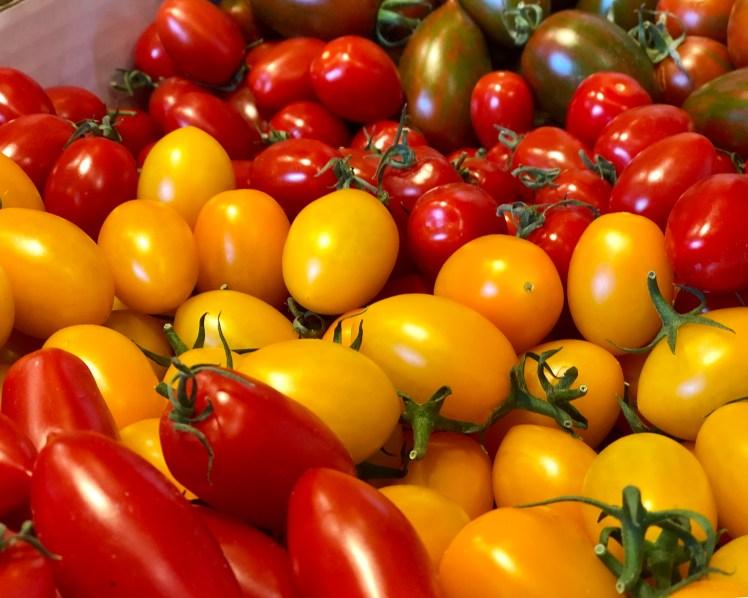 Ändebol Sörmland ekologiska tomater gårdsbutik