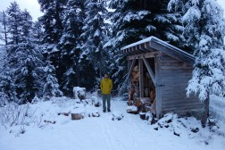 Firewood and outhouses