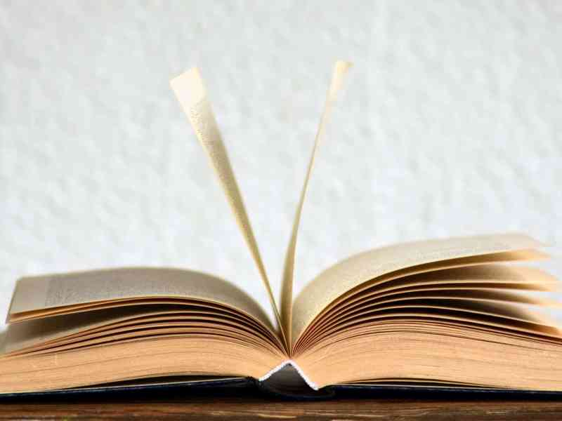 open book pages on surface