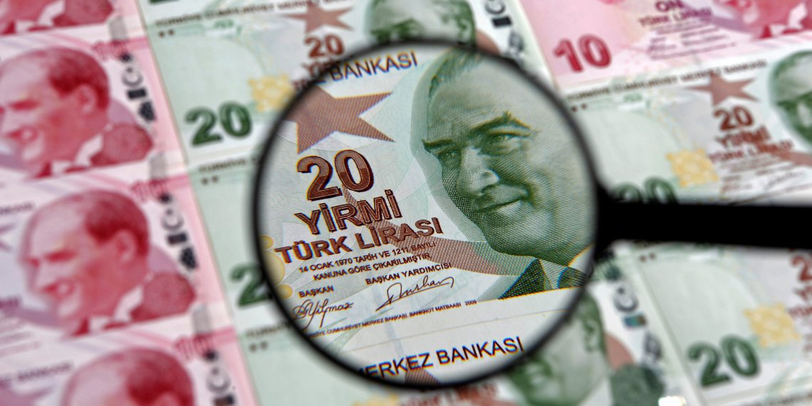 FILE PHOTO: A 20 lira banknote is seen through a magnifying lens in this illustration picture taken in Istanbul January 28, 2014. REUTERS/Murad Sezer/File Photo