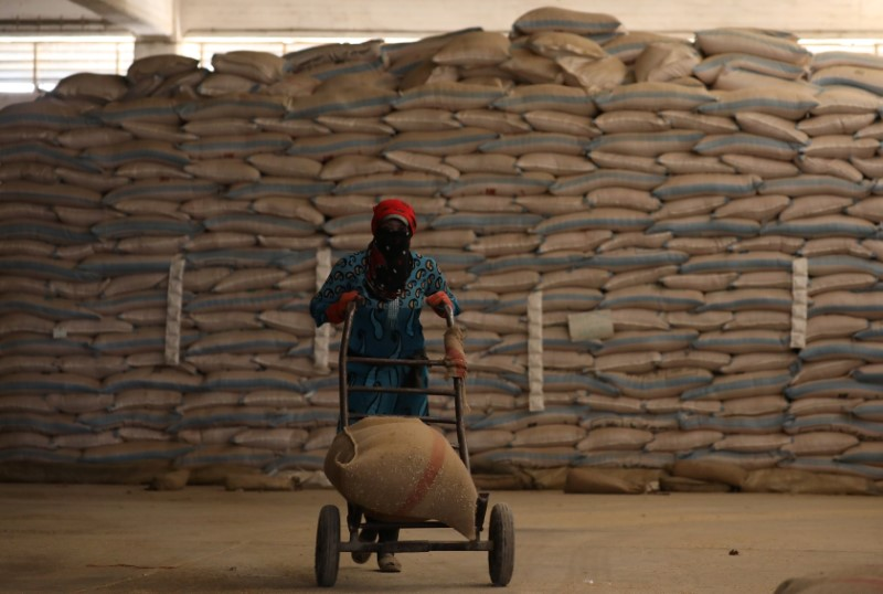 FILE PHOTO: woman pushes a cart loaded with a sack of wheat in Qamishli, Syria September 18, 2017. REUTERS/Rodi Said