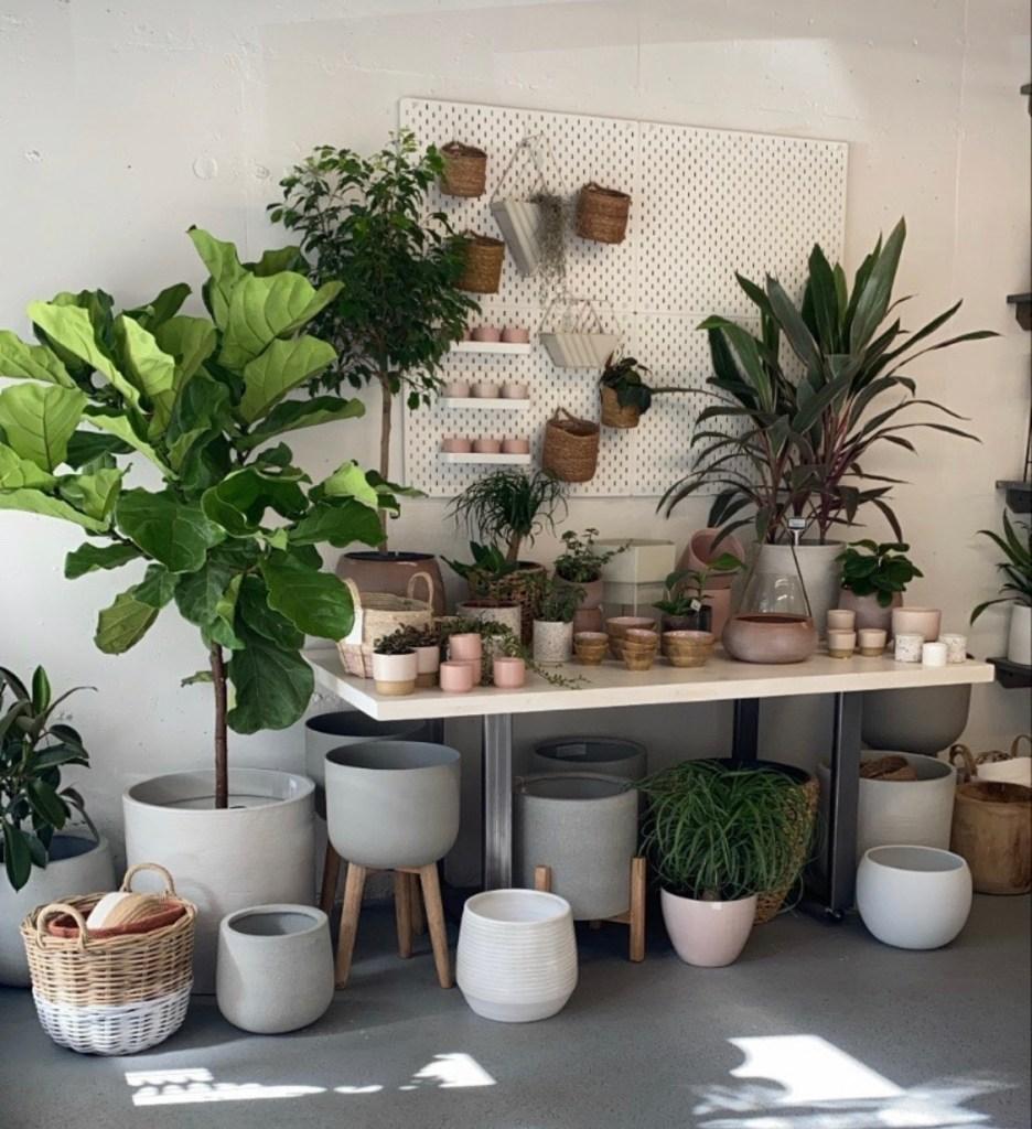 Stok Floral Planters