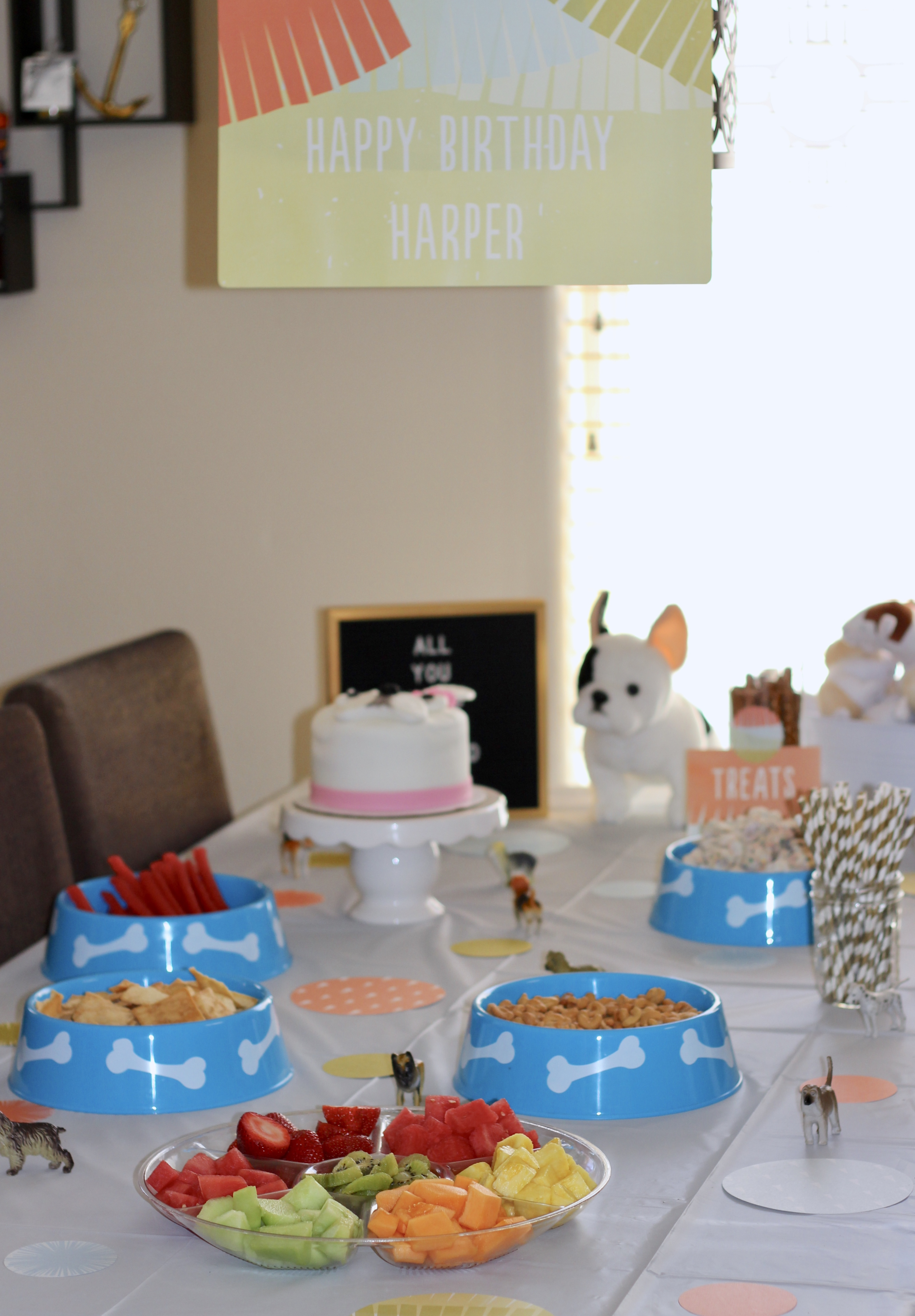 puppy themed birthday party for kids