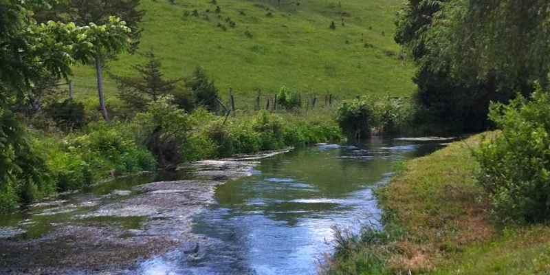 Spring Creek Tenkara