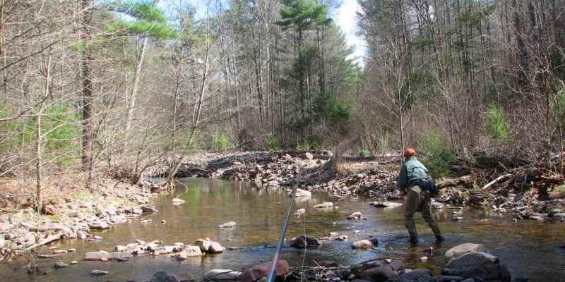Five Great Virginia Streams for Tenkara (part 1)