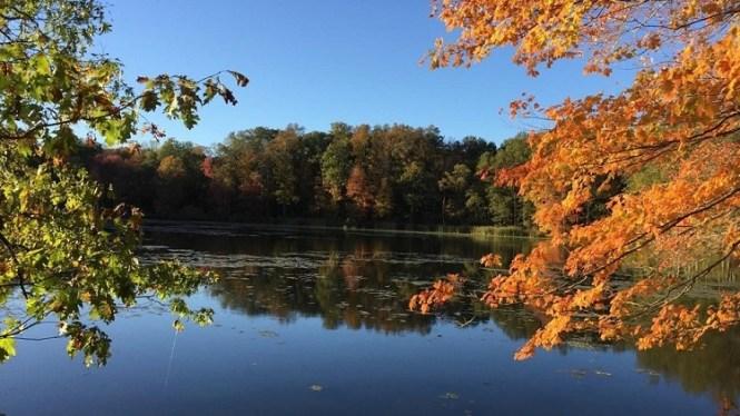 Highland Pond Fall 17 Meigs 4 - Copy