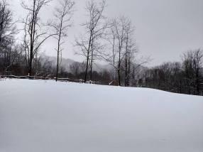 Jan 2016 - Snow01