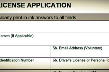 Michigan CPL Application