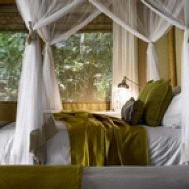 Sanctuary-Gorilla-Forest-Camp-Room-1024x576
