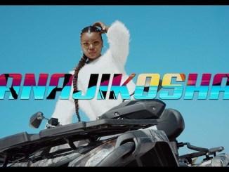 VIDEO: Harmonize – Anajikosha