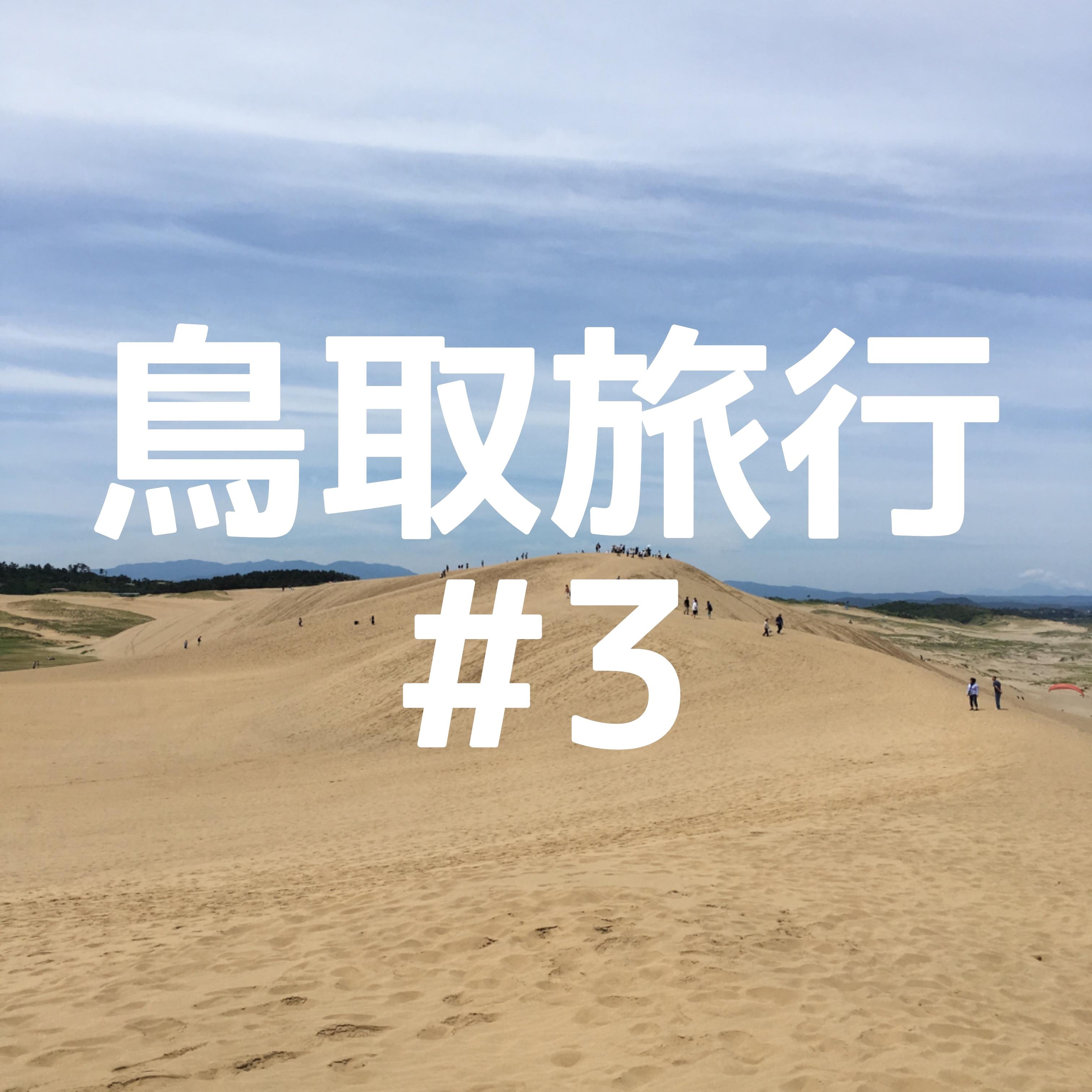 ボード サンド 鳥取砂丘でサンドボード!日本海に向かって降りるスノボが最高だった。