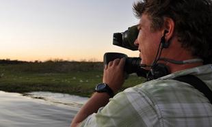 Câmeras Selvagens