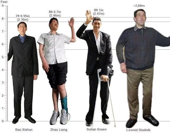 gigante 2 - A Vida do homem mais alto do mundo
