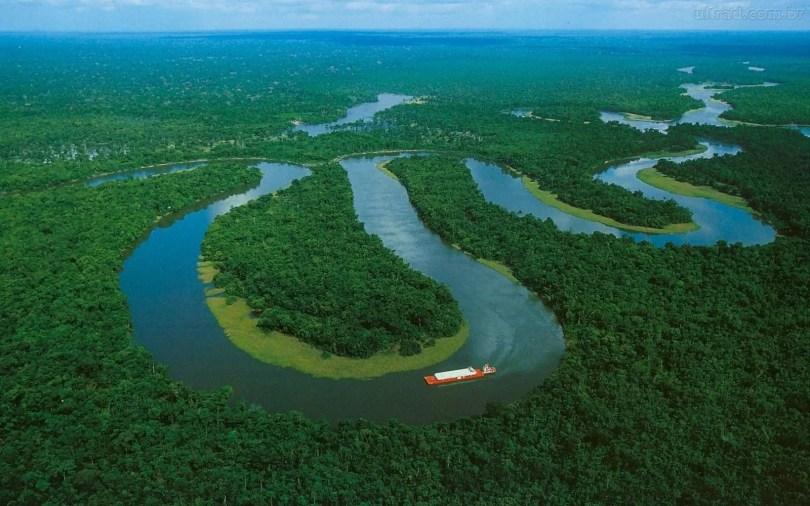 amazonia - 6 Motivos para acreditar que a Floresta Amazônica é nossa