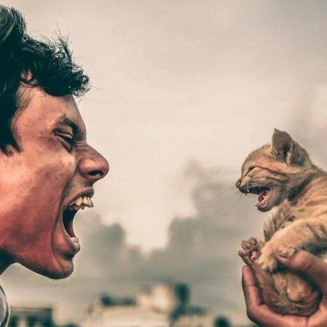 homem versus animal - Grandes brigas entre homens e animais! Natureza...