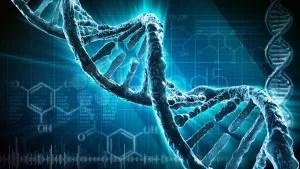 """dna - Tecnologia inovadora de """"cirurgia do DNA"""" desperta interesse da comunidade científica mundial"""