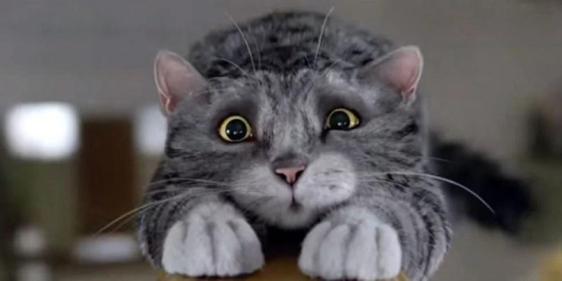 Fotos, Curiosidades, Comunicação, Jornalismo, Marketing, Propaganda, Mídia Interessante gatinho-mog4 Comercial: O gatinho Mog e a culpa da calamidade no Natal Comerciais  Comercial gatinho