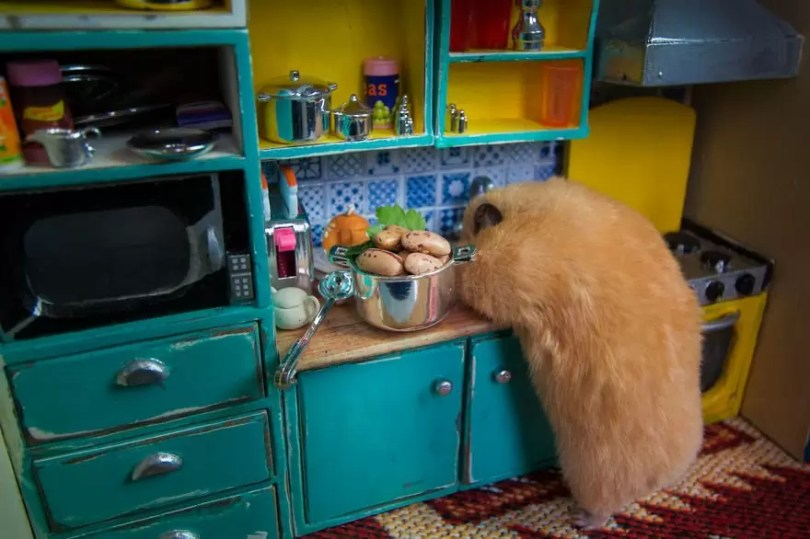 """Crafted miniature town for HUNGRY HUNGRY HAMSTERS online series 5935d43594ac9  880 - Genial! Artistas criam uma """"mini cidade"""" para Hamsters"""