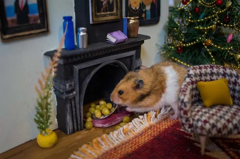 """Crafted miniature town for HUNGRY HUNGRY HAMSTERS online series 5935d4d50373c  880 - Genial! Artistas criam uma """"mini cidade"""" para Hamsters"""