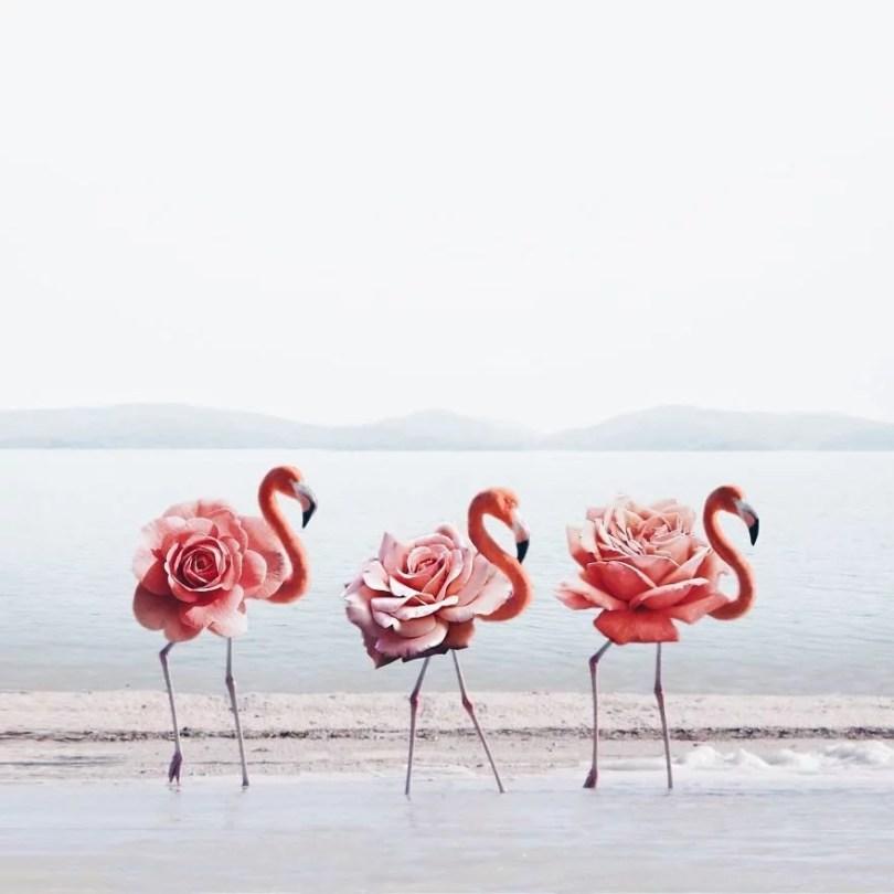 fotografia objetos inesperados para criar arte surreal4 - Menina usa edição no Photoshop para fazer imagens surreais
