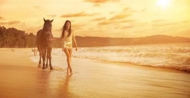 Fotos, Curiosidades, Comunicação, Jornalismo, Marketing, Propaganda, Mídia Interessante cavalos-selvagens-fotos-profissionais-15 Fotos lindas capturadas de cavalos selvagens Fotos e fatos Marketing  cavalos selvagens
