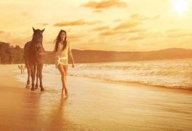 cavalos selvagens fotos profissionais 15 - Fotos lindas capturadas de cavalos selvagens