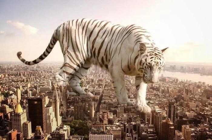 animals gigants 13 - Photoshop: Imagine um mundo com animais gigantes
