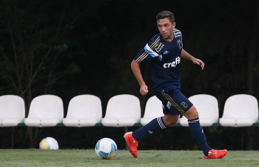 Allione: perto de voltar a jogar pelo Palmeiras. (Cesar Greco/Ag. Palmeiras/Divulgação)