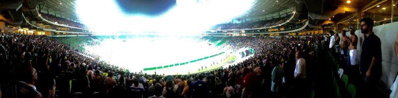Palmeiras Rio Claro