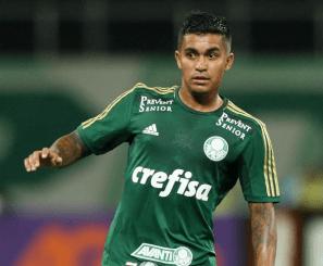 Dudu Palmeiras Santos