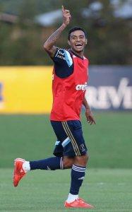 Recuperado, Cleiton Xavier deve ser opção no banco de reservas contra o ASA-AL. (Cesar Greco/Ag. Palmeiras/Divulgação)