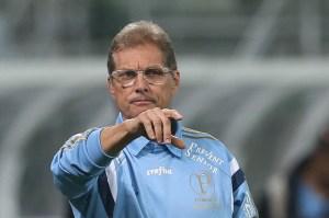 O treinador compreende a irritação de alguns torcedores do Verdão. (Cesar Greco/Ag. Palmeiras/Divulgação)