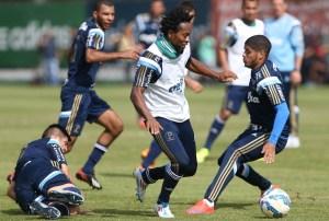 Elenco treinou na Academia de Futebol e Zé Roberto voltou para a lateral. (Cesar Greco/Ag. Palmeiras/Divulgação)