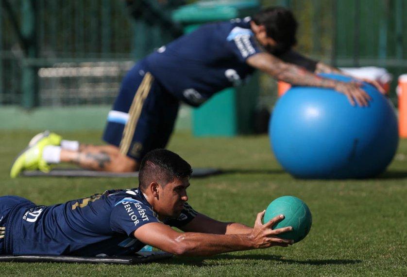 O elenco palmeirense se reapresentou depois de dois dias de folga. (Cesar Greco/Ag. Palmeiras/Divulgação)