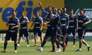 Palmeiras encerrou a preparação na manhã deste sábado (22) . (Cesar Greco/Ag.Palmeiras/Divulgação)