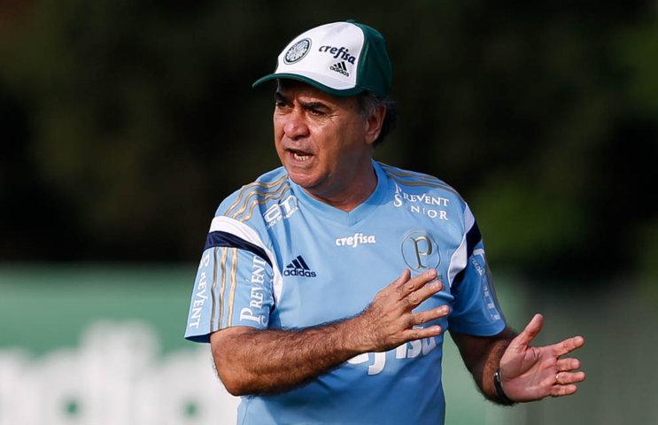 M. Oliveira segue ajustando equipe para confronto da próxima quarta-feira (18). (Cesar Greco/Ag.Palmeiras/Divulgação)