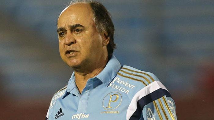 Marcelo Oliveira acredita que o Alviverde poderia ter tido um resultado melhor nesta noite. (Cesar Greco/Ag.Palmeiras/Divulgação)