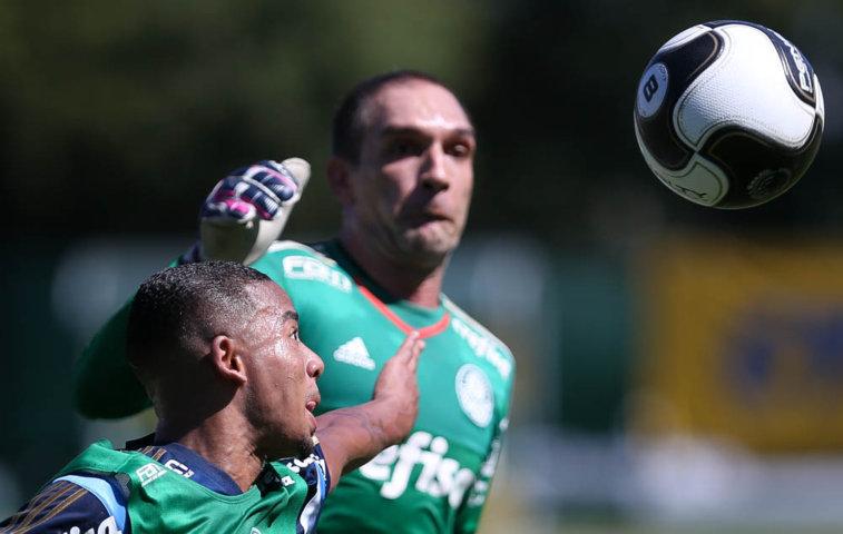 Matheus Sales vem sendo titular com o técnico Cuca. (Cesar Greco/Ag.Palmeiras/Divulgação)