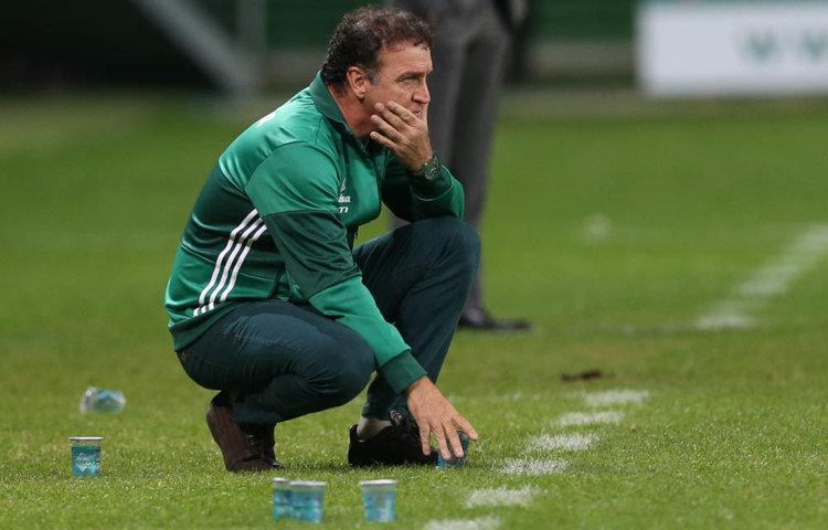 Cuca segue invicto no Allianz Parque à frente do Verdão: seis vitórias em seis jogos. (Cesar Greco/Ag.Palmeiras/Divulgação)