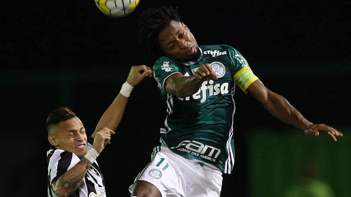 Zé Roberto foi novamente titular na lateral-esquerda neste domingo (31). (Cesar Greco/Ag.Palmeiras/Divulgação)