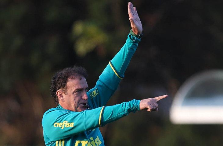 Palmeiras realizou os últimos preparativos para o duelo com a Chapecoense durante a tarde desta quarta-feira (03). (Cesar Greco/Ag Palmeiras/Divulgação)