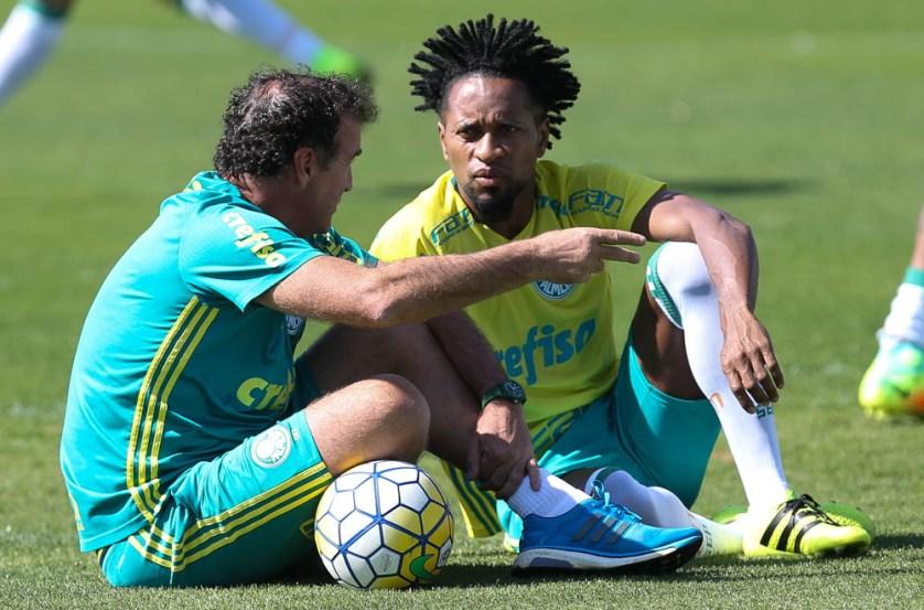 Suspenso contra o Atlético-PR por cartões amarelos, o lateral-esquerdo Zé Roberto está de volta. (Cesar Greco/Ag.Palmeiras/Divulgação)