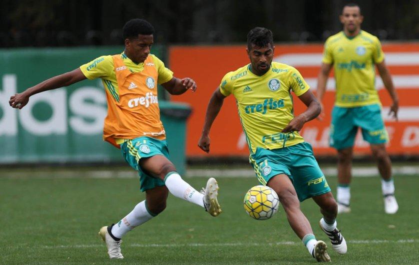 Thiago Santos atuou contra o Sport e treinou nesta terça (25). (Cesar Greco/Ag.Palmeiras/Divulgação)