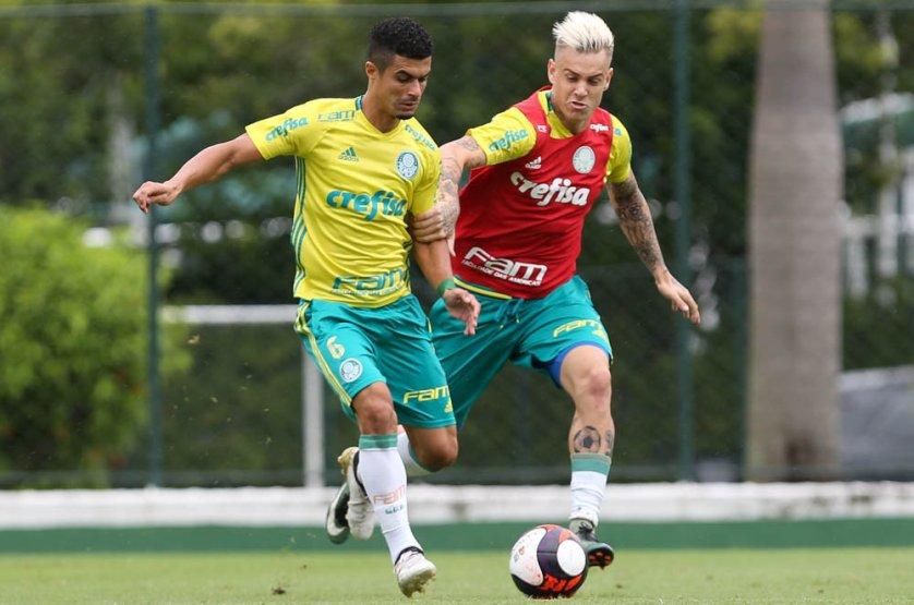 Elenco alviverde segue em preparação para primeiro teste da temporada. (Cesar Greco/Ag.Palmeiras/Divulgação)