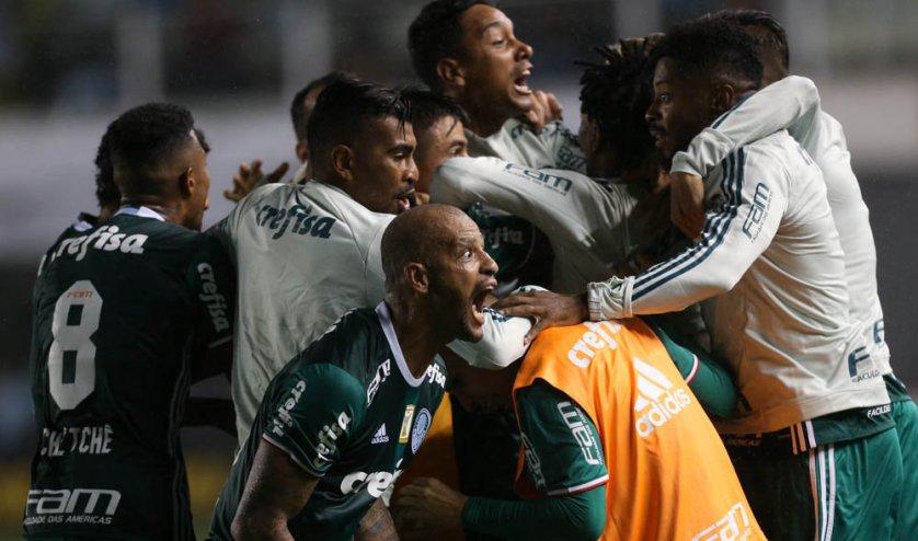 Os jogadores do Verdão comemoraram muito a virada sobre o Santos. (Cesar Greco/Ag. Palmeiras/Divulgação)