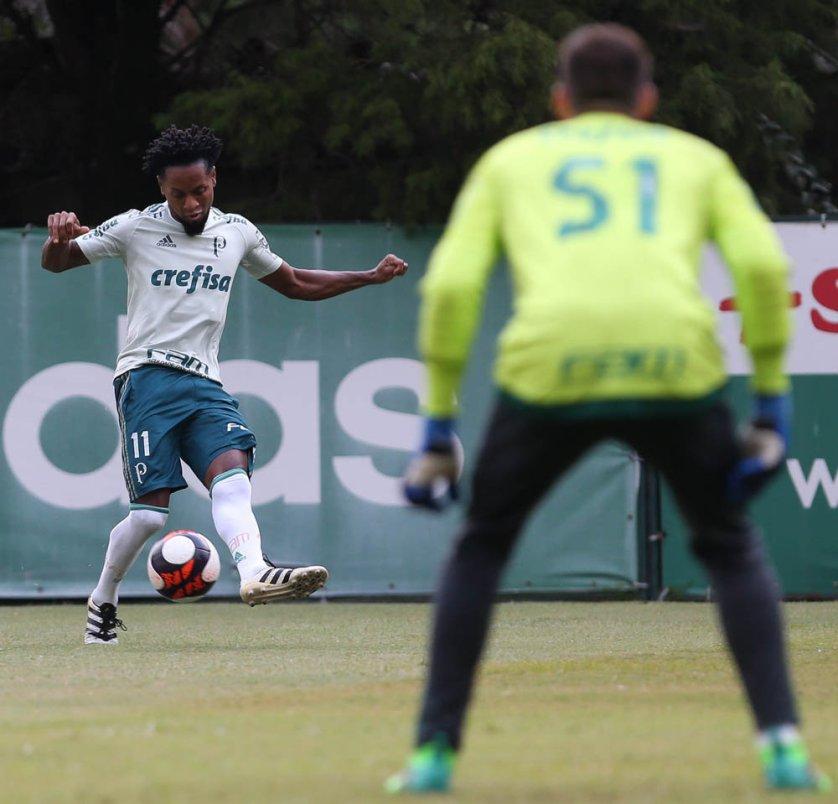 Zé Roberto cumpriu suspensão no último confronto. (Cesar Greco/Ag Palmeiras/Divulgação)
