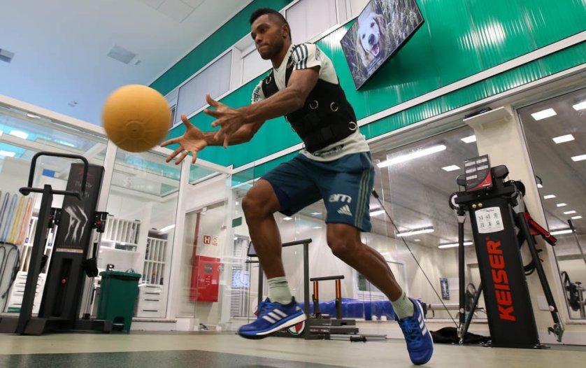 Elenco fez treino de força e potência no centro de excelência da Academia. (Cesar Greco/Ag Palmeiras/Divulgação)