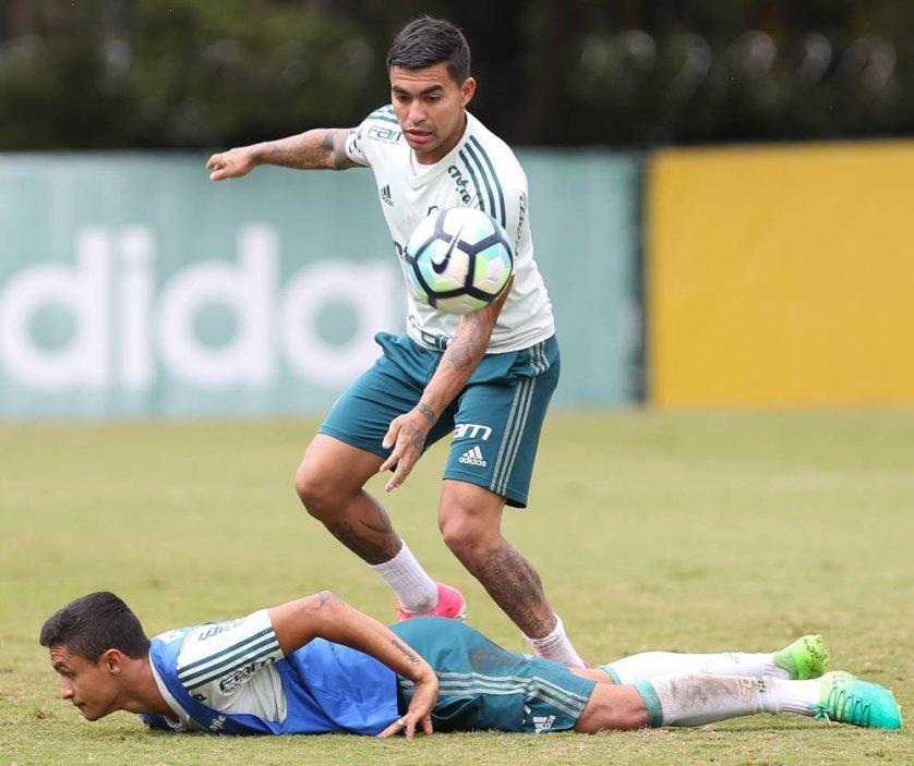Dudu trabalhou com o grupo sem restrições, mas ainda é dúvida para o confronto com o Atlético-GO. (Cesar Greco/Ag. Palmeiras/Divulgação)
