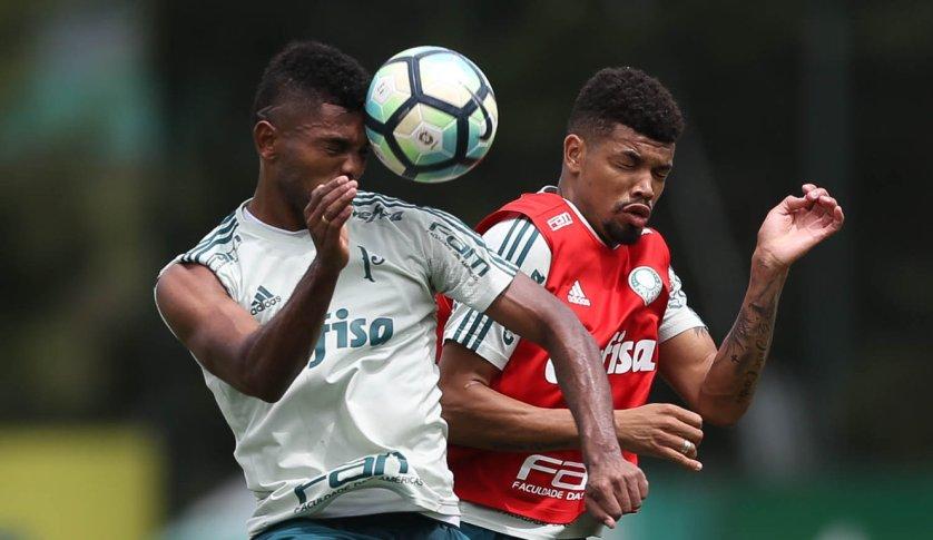 O Verdão finalizou na tarde deste domingo (19) a preparação para enfrentar o Avaí. (Cesar Greco/Ag Palmeiras/Divulgação)
